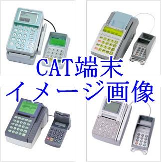 cat_mini